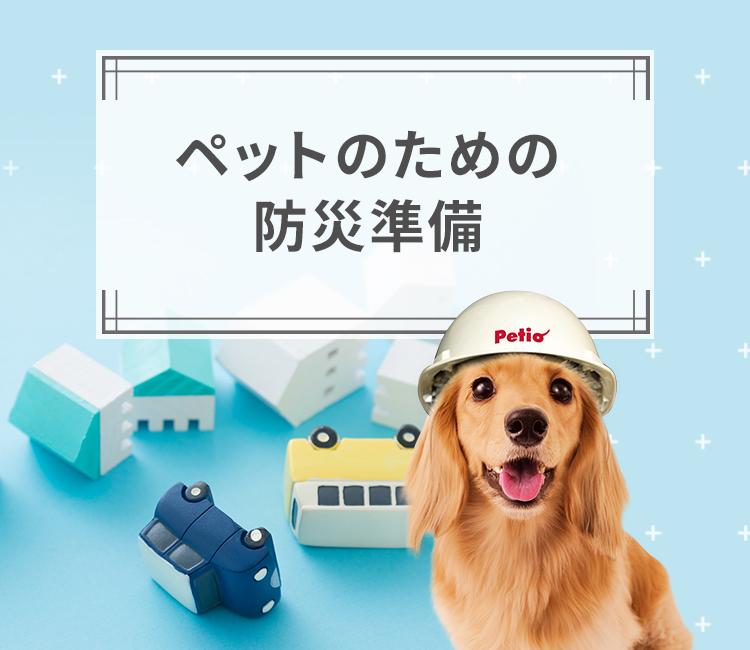 ペットのための防災準備|Petio ペティオオンラインショップ