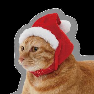 メリークリスマスcat_02