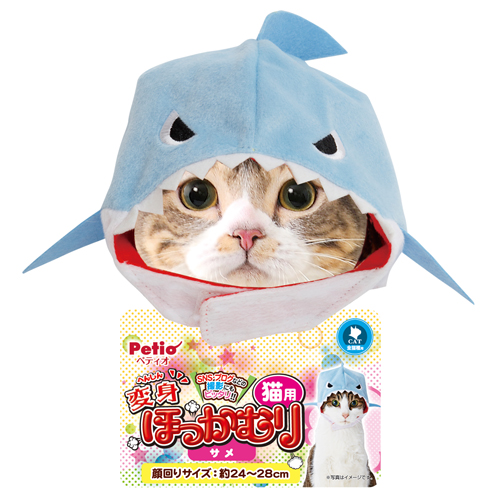 henshin hokkamuri cat_same_161125INOL