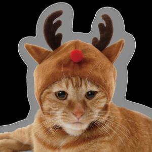 メリークリスマスcat_03