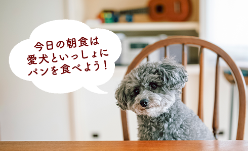 dog_pan