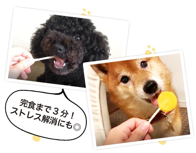 7_photo_2-2