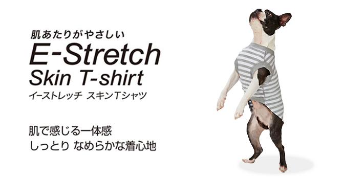 スキンTシャツ