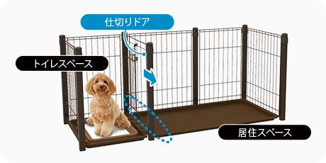 dogroomcircle2021_pc_07