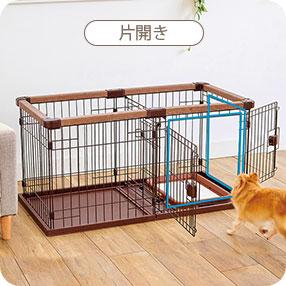 dogroomcircle2021_pc_12